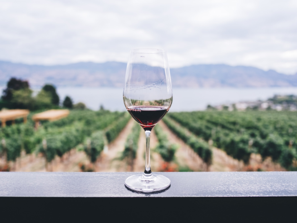 a glass of wine overlooking a vineyard